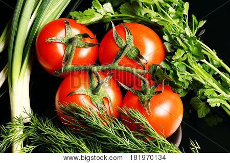 Red tomatoes on a branch with stems of green parsley dill and onion isolated on a black background