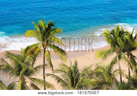 Palm trees, ocean waves and beach, Acapulco, Mexico, the Pacific Ocean