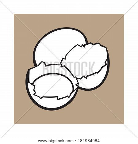 Cracked, broken and spilled chicken egg, sketch style vector illustration isolated on brown background. Hand drawn, sketched raw, uncooked chicken egg and halves of eggshell