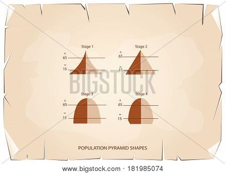 Population and Demography, Illustration Set of 4 Types of Population Pyramids Chart or Age Structure Graph on Old Antique Vintage Grunge Paper Texture Background.