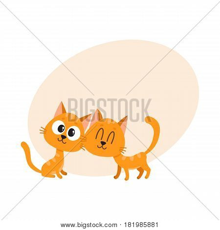 Two cute and funny red cat, kitten characters, looking curiously, interested, cuddling, cartoon vector illustration with space for text. Couple of cute little red cat, kitten characters