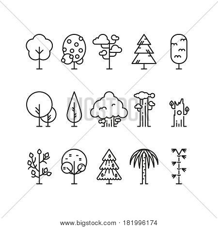Primitive simple contour line trees. Nature plants symbols. Linear tree plant, illustration of natural linear forest tree
