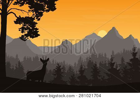 Realistic Illustration Of Mountain Landscape With Coniferous Forest And Deer. Under The Morning Oran