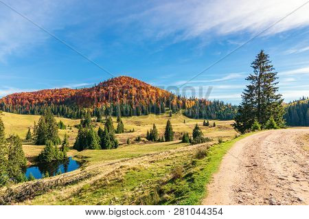 Sunny Forenoon In Autumn In Mountains. Beautiful Landscape With Beech Forest In Red Foliage On The H