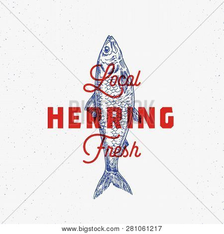 Local Fresh Herring. Abstract Vector Sign, Symbol Or Logo Template. Hand Drawn Herring Fish With Cla