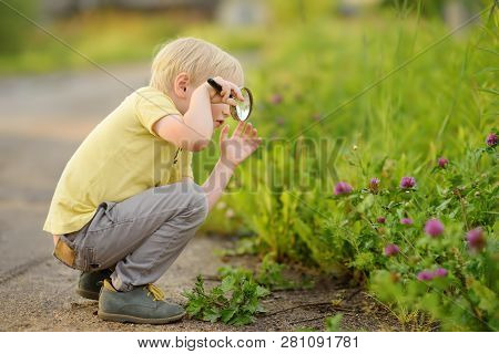 Charming Kid Exploring Nature With Magnifying Glass. Little Boy Looking At Grass With Magnifier. Sum