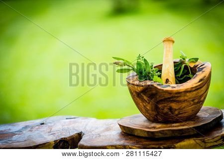 Fresh herbs from the garden in wooden olive mortar against with sunny garden background. Image