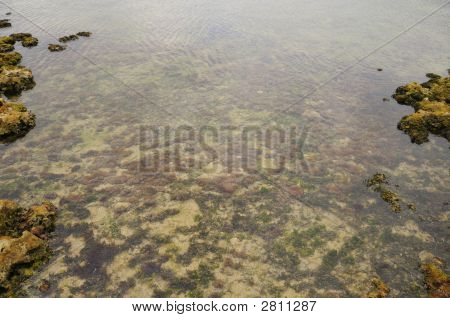 Abstract Marine Landcape