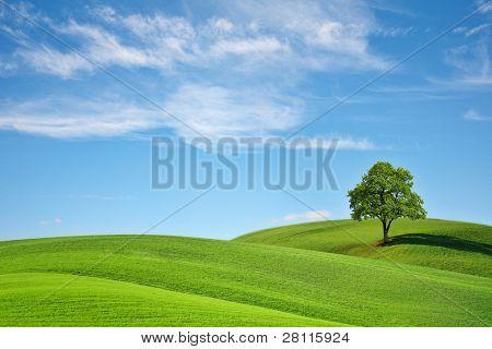 Green Planet Earth