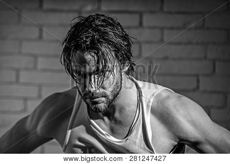 Bearded Man With Wet Long Hair In White Singlet. Macho With Muscular Shoulders, Arms. Masculinity, P