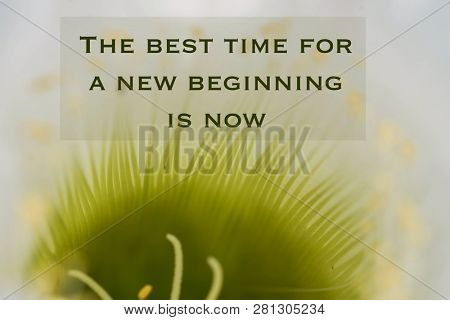 Inspirational, motivational quote against nature background. The best time for a new beginning is now.