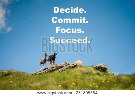 Inspirational, motivational quote against nature background. Decide. Commit. Focus. Succeed.