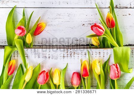 Spring Colored Tulips Arranged Between White Rustic Boards With Copy Space.