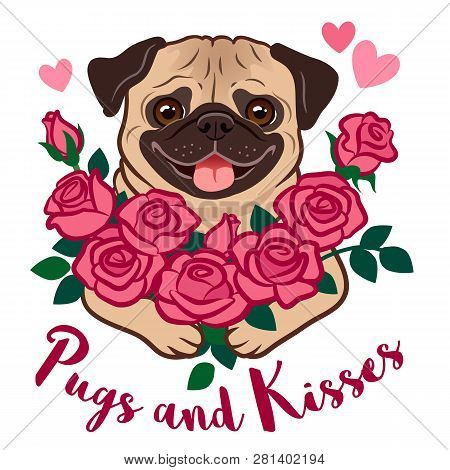Funny Pug Puppy Dog Holding A Bunch Of Pink Roses, With Hearts And Text