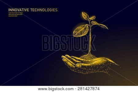 Low Poly Hands Holding Golden Tree Sprout. Wealth Prosperity Saving Money Growing Income Profit. Gro