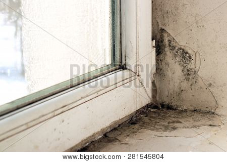 Dampness And Mold On Windows And Slopes
