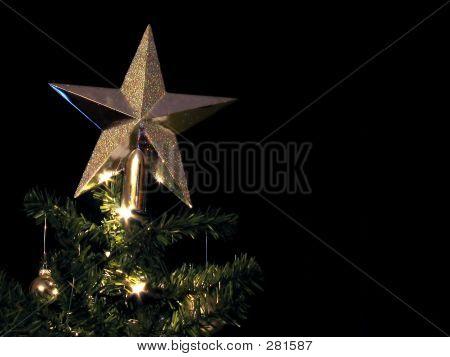 Tree Star 2