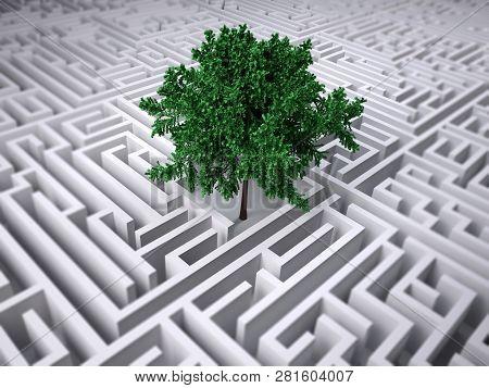 Single Tree Inside Endless Labyrinth, 3d Illustration