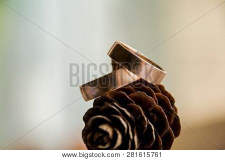 Beautiful Two Gold Wedding Rings Lying On A Pile Of Pine Cones.invitation Card.copy Space. Love Conc
