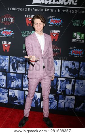 LOS ANGELES - JAN 30:  Ty Simpkins at the Excelsior! A Celebration of Stan Lee at the TCL Chinese Theater IMAX on January 30, 2019 in Los Angeles, CA