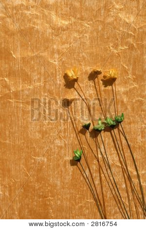 Golden Colour Painted Paper And Dried Flowers