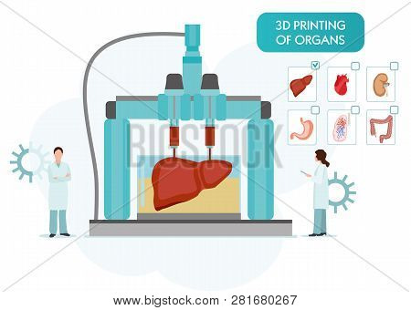 Bioprinting Concept, 3d Printing Of The Liver, Stomach, Lungs, Kidneys And Heart. Scientists With 3d