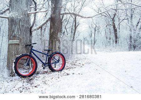 Winter biking, fat tire bike leaning on a tree by the bike path