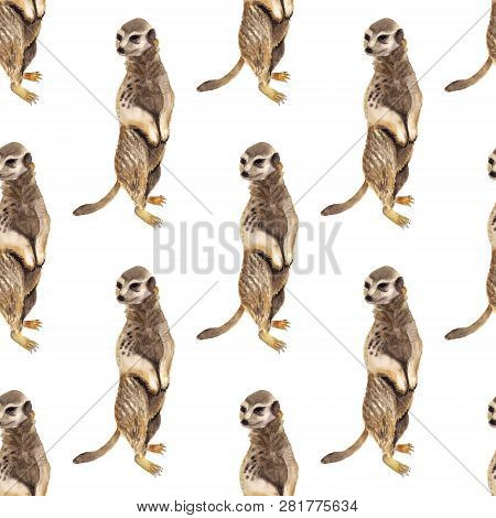 Seamless Pattern With Watercolor Image Of Meerkat. Good Design For Wrapping Paper, Textile, Scrap Bo