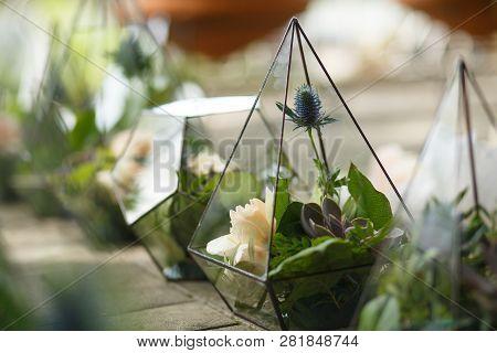 Female Florist Puts Fresh Succulent And Rose Flowers In Glass Florarium. Event Fresh Flowers Decorat