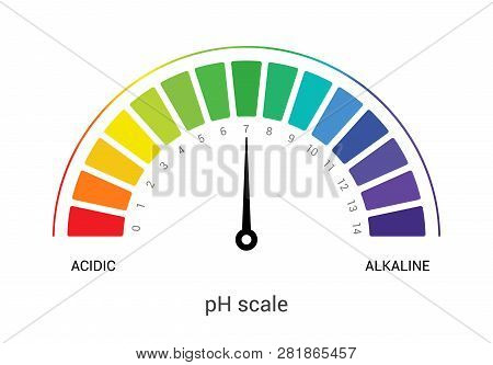 Ph Scale Indicator Chart Diagram Acidic Alkaline Measure. Ph Analysis Vector Chemical Scale Value Te