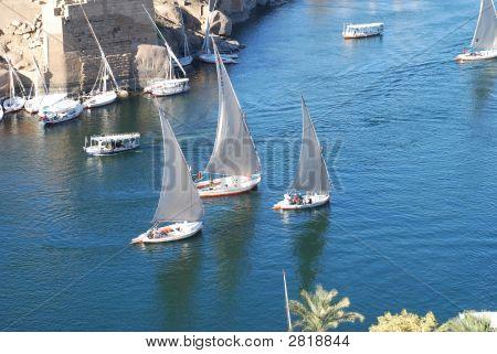 Fellucas On The Nile