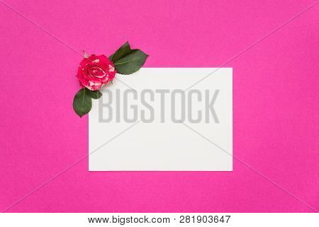 Small Roses And Blank White Card On Pink Background