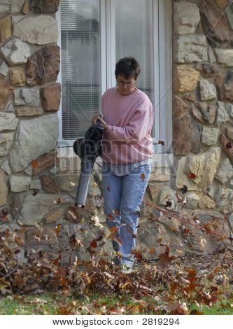 Fall Chores