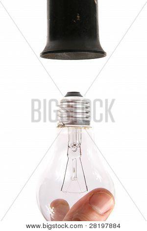 Screw Light Bulb