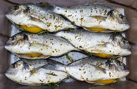 Prepared To Grill Group Of Gilt-head Sea Breams With Lemons, Rosemary And Olive Oil