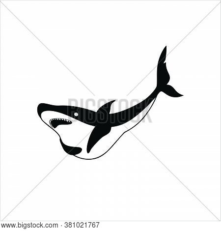 Shark Icon Trendy And Modern Shark Symbol For Logo.