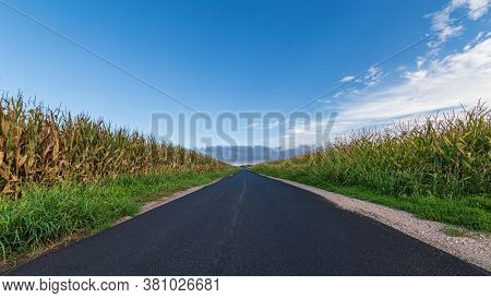 A Long Paved Road Runs Towards The Horizon Passing Three Cornfields, Landscape Image