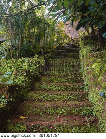 A Stairway Built From Red Laterite Stones And Leading Up To The Top, With Moss And Other Vegetation