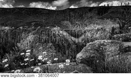 Black And White Photo Of A Wooden Trestle Bridge Of The Abandoned Kettle Valley Railway Viewed From