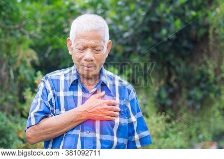 Senior Man Clutching Chest Pain While Standing In A Garden. The First Signs Of Angina Or A Myocardia