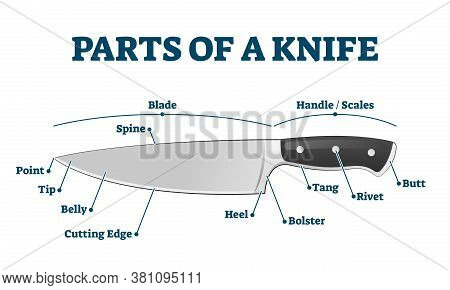Parts Of Kitchen Knife With Labeled Structure Description Vector Illustration. Educational Diagram W