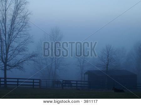 Cool Foggy Blue
