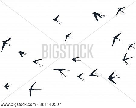 Flying Swallow Birds Silhouettes Vector Illustration. Migratory Martlets Group Isolated On White. Wi