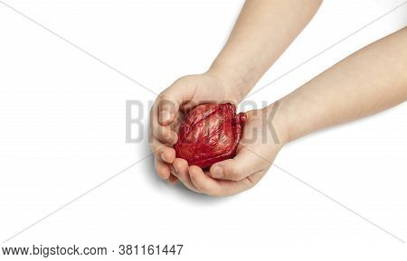 Heart Transplant, Children Hands Holds Organ On White Background. Coronary Surgery, Care For Organ.
