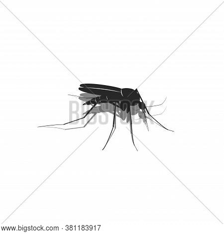 Mosquito Silhouette 3d In Isometric Black And White Minimalistic Illustration Of A Blood Sucking Ins