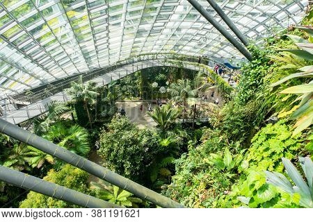 Singapore, 22/01/19. Cloud Forest, The Cool-moist Conservatory In Gardens By The Bay, The Cloud Walk