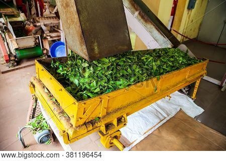 Machines Inside Tea Factory In Munnar Town In India