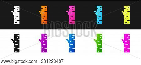 Set Birch Tree Icon Isolated On Black And White Background. Vector