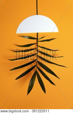 Concept photo on the theme of green energy. Alternative energy source. A branch of a green plant instead of a lamp in the ceiling.