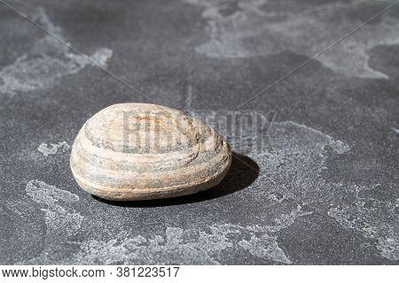 Pebble stone on the concrete surface. Copyspace.